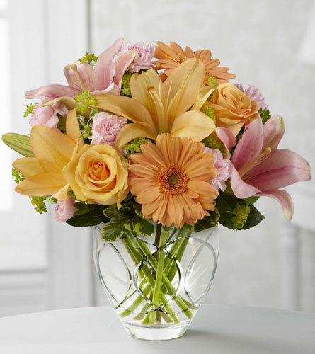 Brighten Your Day by Better Homes & Gardens